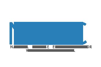 NSEC icon