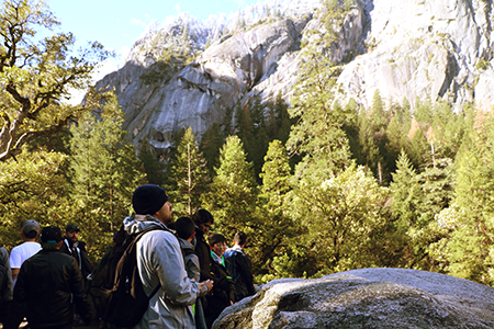 Group of students looking at trees and mountains in the background